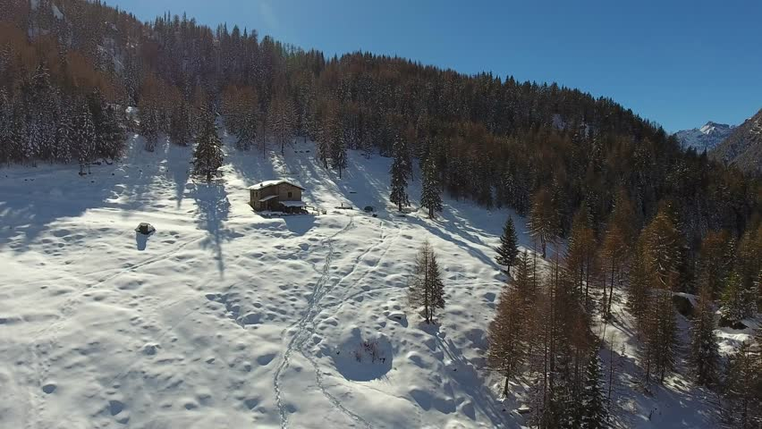 Little hut in a forest - Winter season - Aerial view | Shutterstock HD Video #24481619