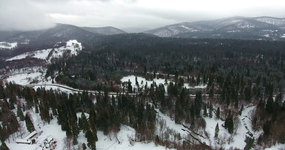Aerial shot moving across snow filled forest, Poland | Shutterstock HD Video #24505769