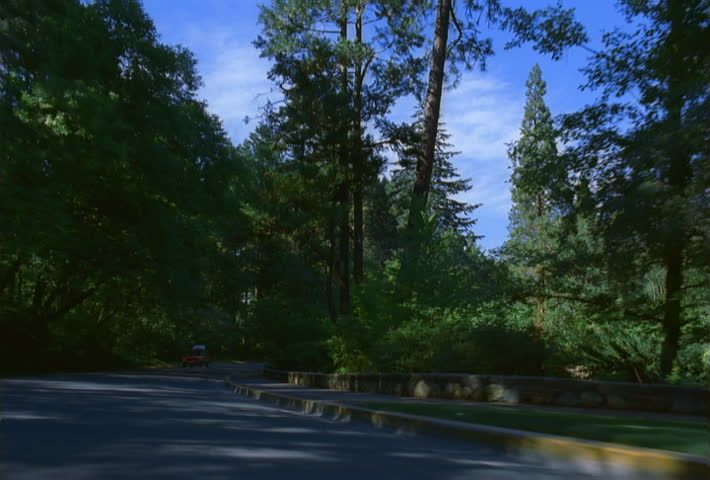 Hood-mount POV of car traveling along street through wooded park | Shutterstock HD Video #24668093