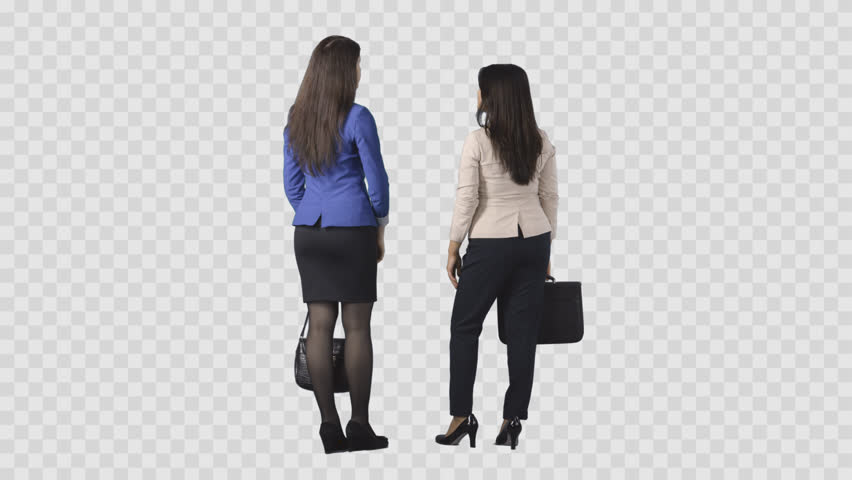 Two young brunette women in business clothes are standing and talking. Back view. Clip with alpha channel