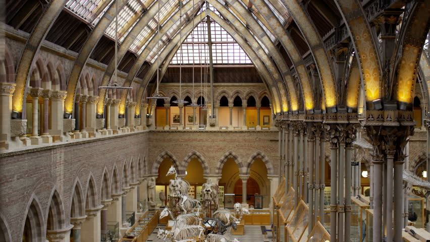 4K View of interior architecture & dinosaur exhibits in Natural History museum