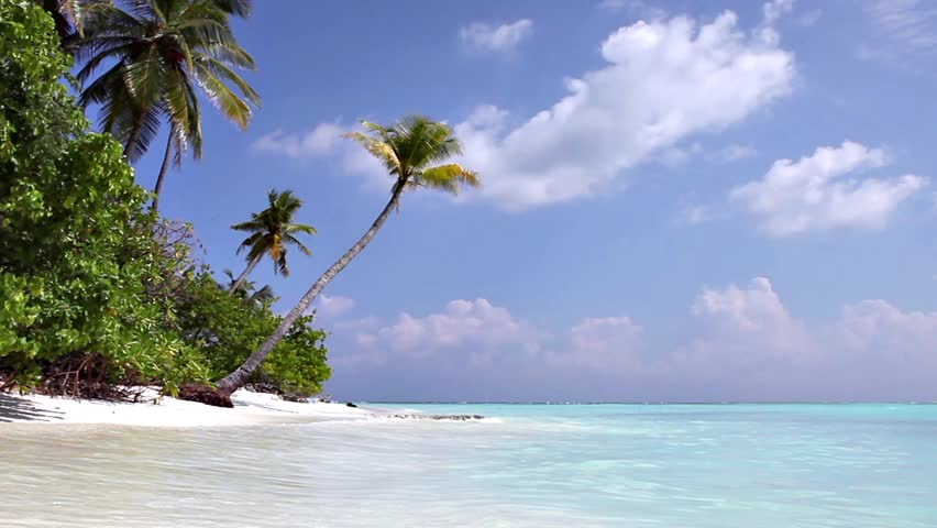 Beach at Maldives island Fulhadhoo with white sandy beach and sea and curve palm | Shutterstock HD Video #25177979