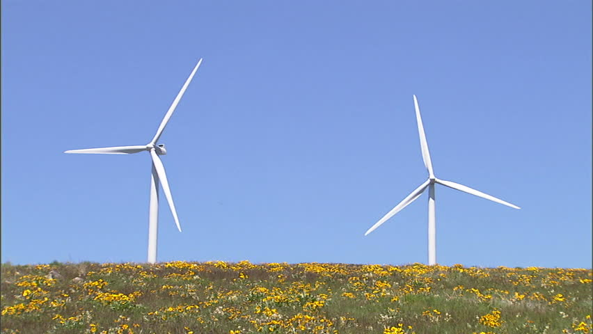 disadvantages of windmills Blowin' in the wind - an overview of the advantages and disadvantages of wind power while wind power isn't an ideal solution to our energy needs, the pros far, far outweigh the cons an endless supply of clean, renewable energy that can be produced cheaply and easily is the holy grail of energy production.