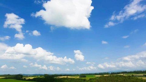biei rural fields in hokkaido
