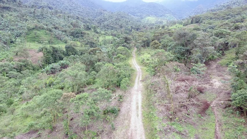 Flying over a track leading through montane rainforest on the western slopes of the Andes  Carchi province in Ecuador. Patches of forest have been cleared for subsistence agriculture.