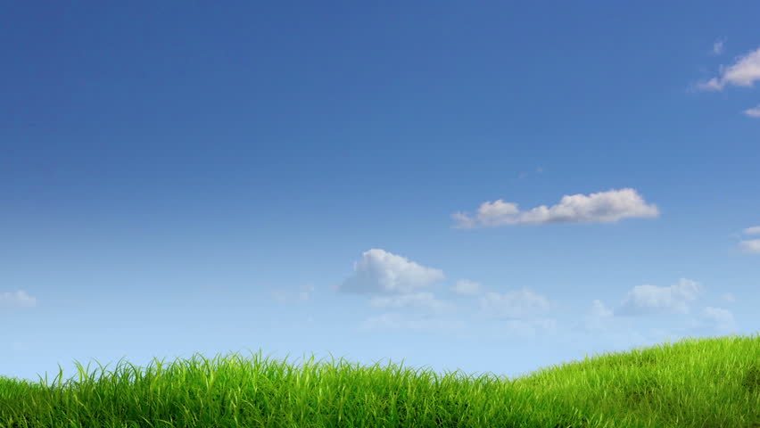 green grass field animated. Stock Video Of Meadow And Sky Background, 3d Animation   2558219 Shutterstock Green Grass Field Animated