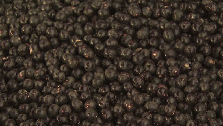 Header of Acai Berry