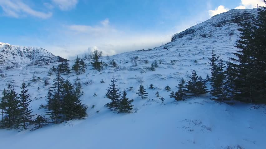 Flight over snow-covered fir trees on the slope of the Lofoten islands   Shutterstock HD Video #25771217