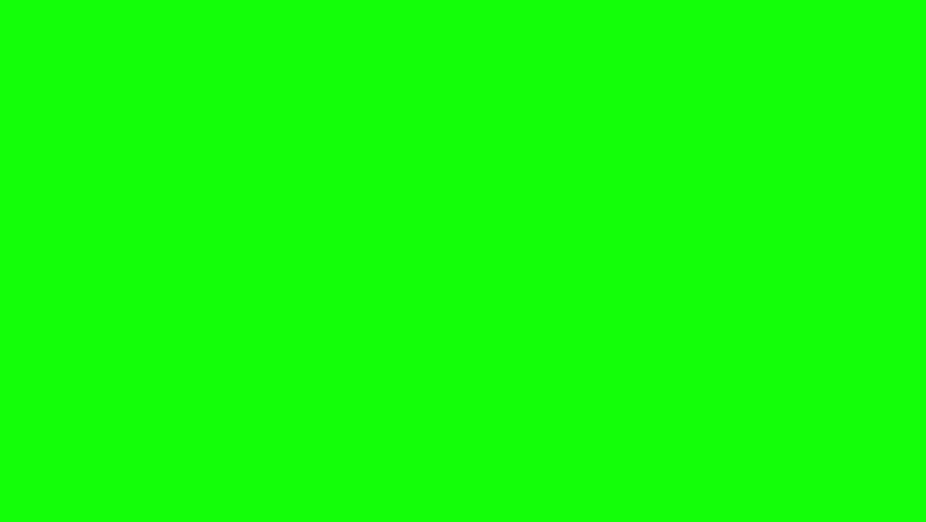 Big Black Hippopotamus Emerges from the Water. Animated Motion Graphic Isolated on Green Screen. | Shutterstock HD Video #25801445