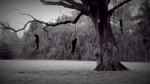 hangman tree, gallows