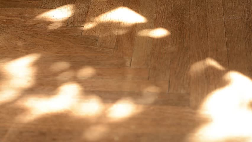Old oak brown parquet flor with intricate texture of shadows from trees and leaves subtly moving.