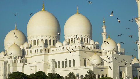Grand Mosque Abu Dhabi.Slow motion Birds In font of Grand Mosque Abu Dhabi