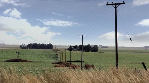 Electric Poles in a Green Field and Clouds in Background. Rural Scene in La Pampa Province, Argentina.