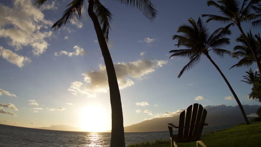 TIme lapse of an adirondack chair and coconut tree, as the sun sets and the stars come out in this day to night timelapse. ( HD full 1920x1080 )