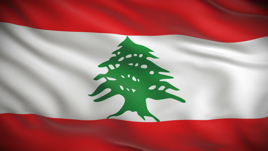 Image result for lebanon flag