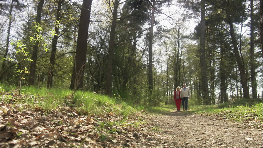 Senior couple walking in a forest