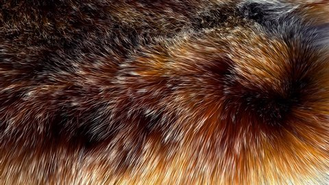 Beautiful red fox fur blowing on the wind, luxury abstract natural animation, close up macro shot of animal hair in slow motion.