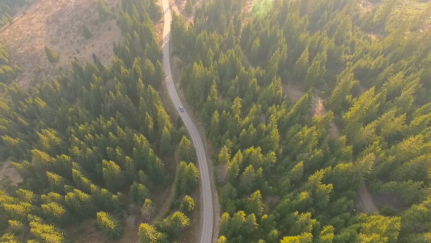 Aerial view flying over old patched two lane forest road with car moving green trees of dense woods growing both sides. Car driving along the forest road. AERIAL: Car driving through pine forest.