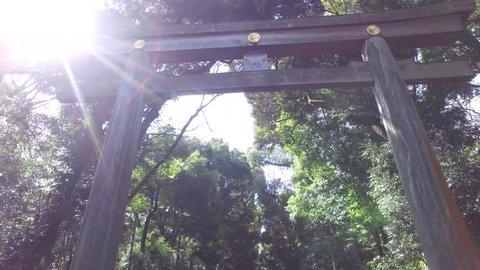POINT OF VIEW: Walking under the Torii iat the entrance of Meiji-jingu shrine. Shibuya Tokyo, Japan