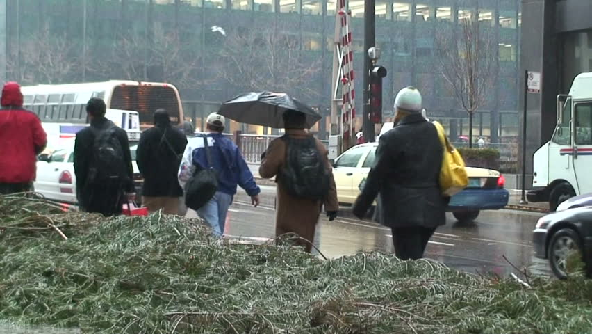 People walking away from camera on city street in downtown Chicago with Umbrellas during snowfall.