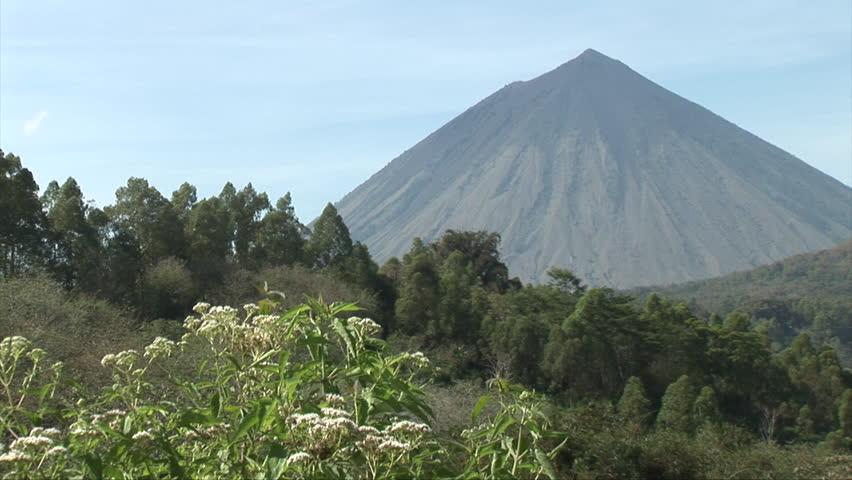 вулкан 100