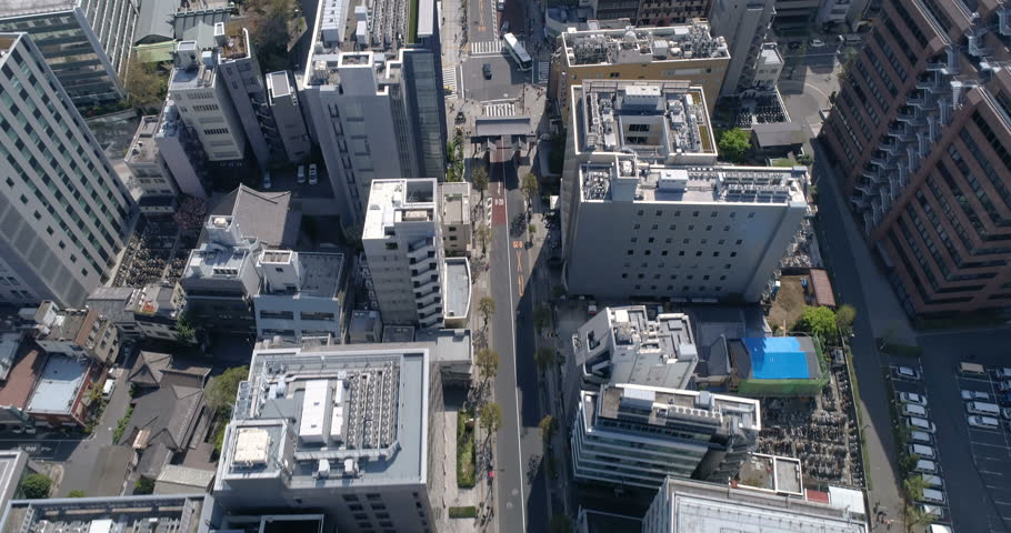 Aerial top view above Tokyo street and park, Japan | Shutterstock HD Video #27233629
