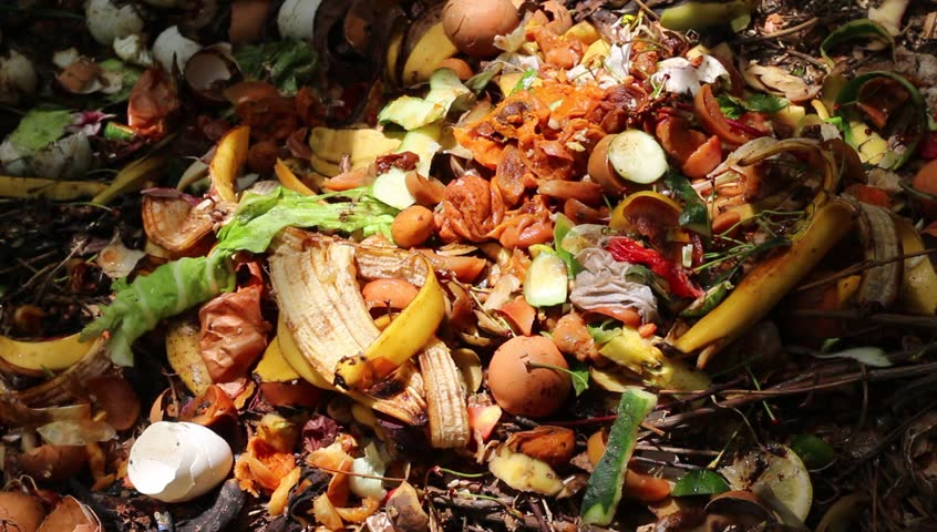 Food scraps compost heap. Compost is organic matter that has been decomposed and recycled as a fertilizer and soil amendment