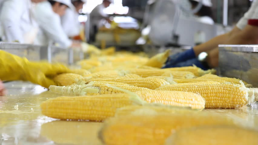 Corn processing factory | Shutterstock HD Video #2735189
