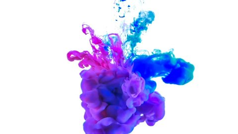 Red and blue paint forming thick, inky pink, blue and purple clouds in clear water against a white background