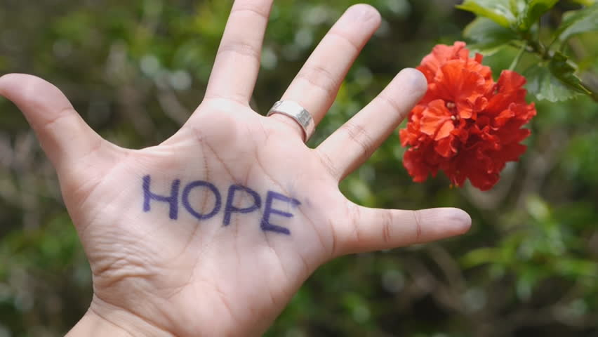 hope hand concept cheer spirit yourself up red flower background symbol close up HD 1920 x 1080