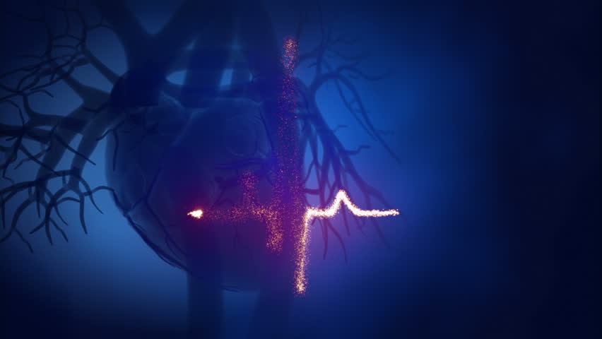 Beating heart with ekg animation
