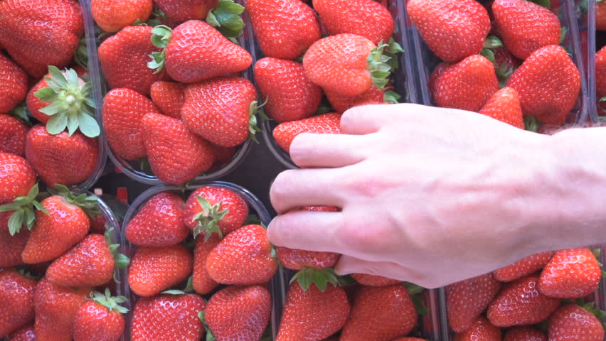 Caucasian man hand take a strawberry from a box of fresh ripe perfect fruits. Food background, top view, natural light