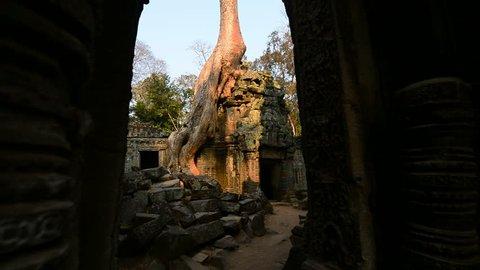 Ruins of Ta Prohm Temple, Angkor, Cambodia, Asia