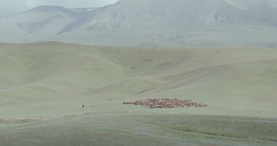 Header of Kirghizia
