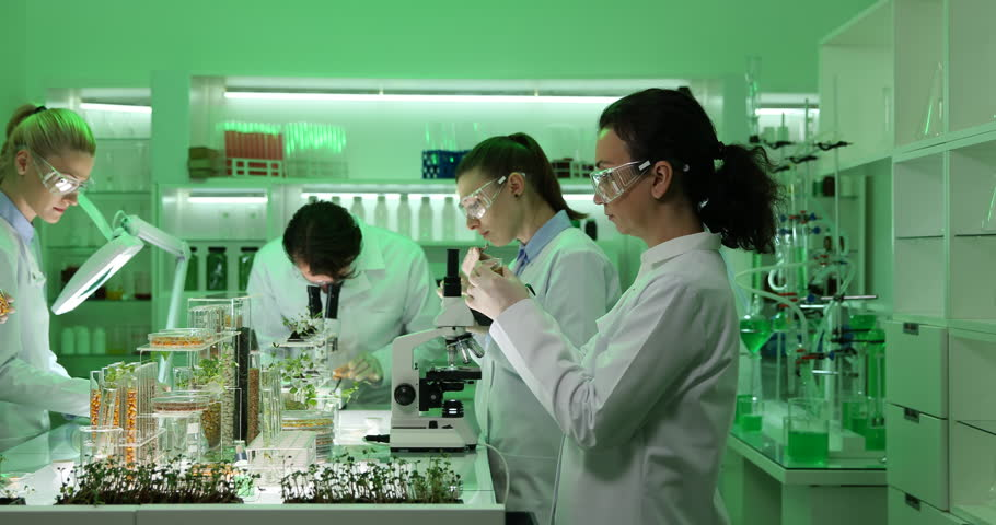 Group of Biochemists Team Work Talking Organic Plants and Seeds in Research Lab