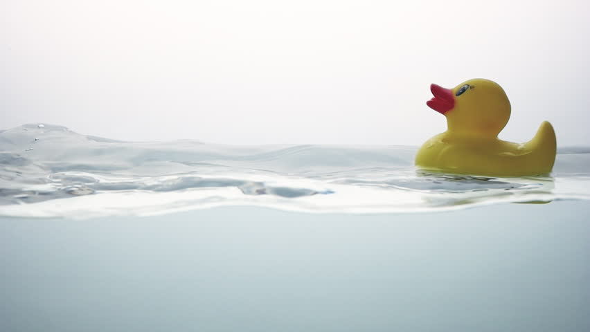 Rubber Duck floats on water surface