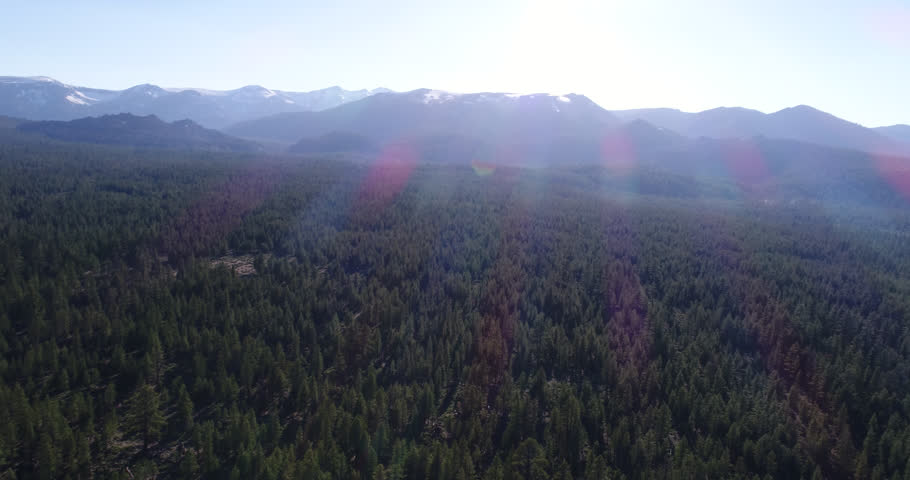 Aerial Tree mountains summer with light snow. Mammoth Mountain lava dome, Mammoth Lakes, California, Inyo National Forest of Madera &  Mono Counties Phantom 4 Pro source 4k h265 con. to 4444 prores