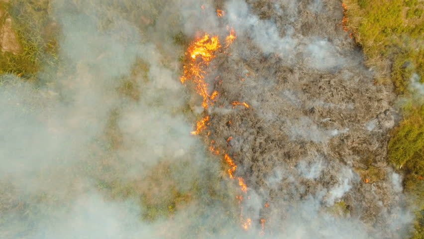 Aerial view forest fire on the slopes of hills and mountains. Forest and tropical jungle deforestation for human food farming and export. large flames from forest fire. Using fire to destroy natural