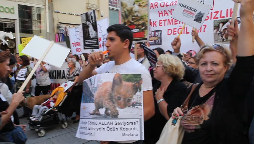 ISTANBUL - OCTOBER 21: Thousands of animal rights activists marched against a draft law on Sunday that would make changes to Turkey's Animal Protection Law No. 5199 on October 21, 2012 in Istanbul, Turkey.