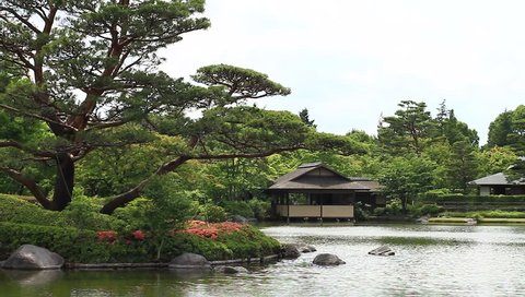 Pine and azalea and old house near the lake at SHOWA KINEN PARK 2017.06.06 in Tokyo camera : Canon EOS 7D