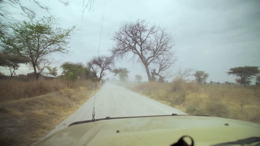 On Safari looking for animals while driving along one of the many dirt roads in the National Park, Tanzania, Africa. Driving through African safari. Point of view of safari vehicle driving. car view.