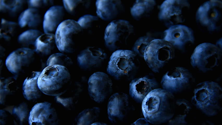 Blueberry full frame use for background | Shutterstock HD Video #29493349