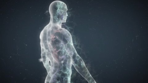 Human Energy Body with Transparent Fluid Body on Top, Camera turns around subject