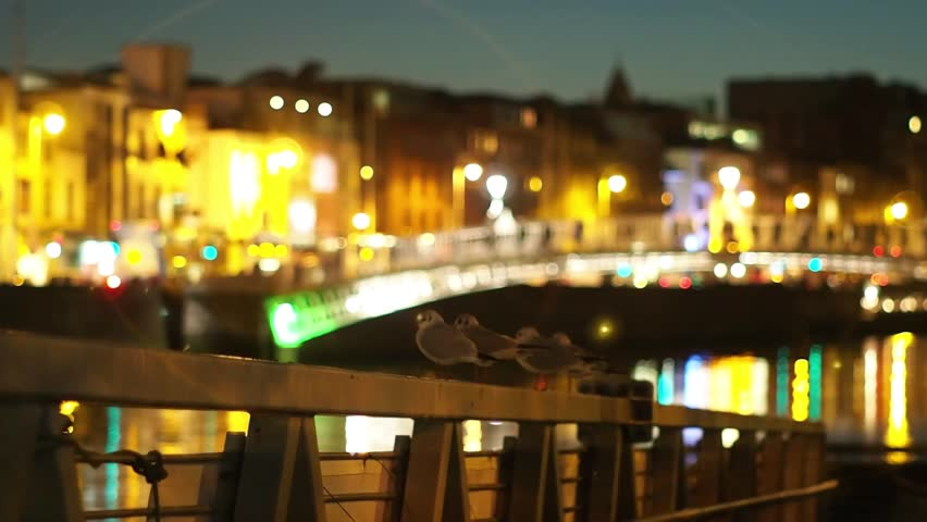 Seagulls by the river Liffey and Hapenny bridge, Dublin, Ireland. Christmas time in Europe. Cold winter season. European cityscape of an viking old town with cozy night lighs.