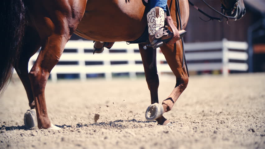 Riding horse in jogging pace slow motion 4K. Long shot of horse lower part of the body in focus while riding in the arena. Riders cowboy boots in the stirrup.