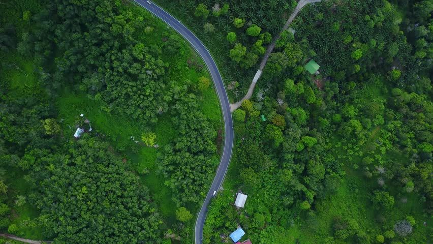 Fly over winding road, passing lush vegetated tropical area, top-down aerial shot of Kata Sai Yuan. Rainforest covering hill slope, view from above. Camera turn and follow roadway line curve