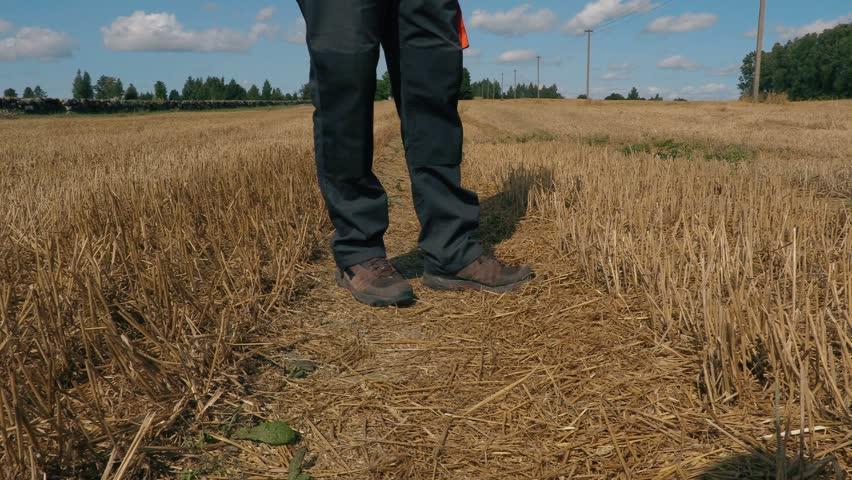 Farmer with tablet on field in summer  | Shutterstock HD Video #30211849