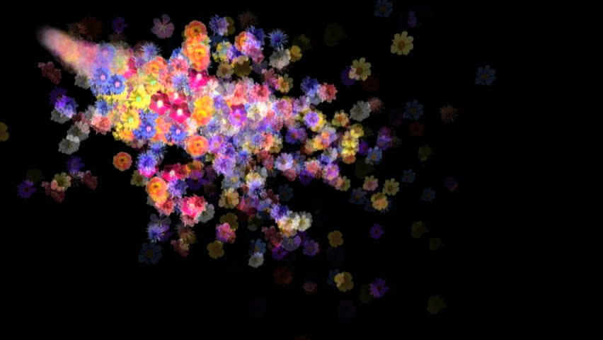 Flowers motion background. 3d animation with alpha matte.