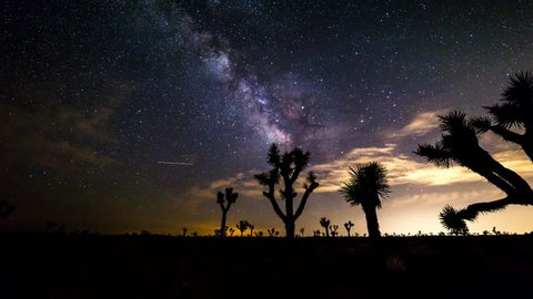 Milky Way and Clouds with Joshua Trees in California Timelapse