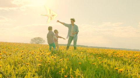 Little boys are flying kite with mother at sunset